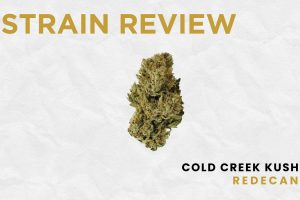 Legal Cannabis Strain Review: Cold Creek Kush by Redecan