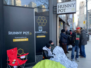Legal Cannabis Dispensaries in Toronto