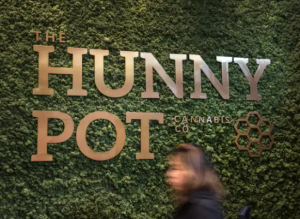 Legal Cannabis Store in Toronto