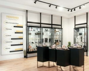 Inside Toronto's First Legal Retail Location: The Hunny Pot