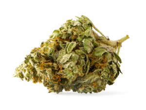 Legal Cannabis Strain Review: Citrus Punch
