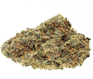 Legal Cannabis Strain Review: No-17.