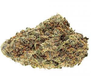 Legal Cannabis Strain Review: No-17.