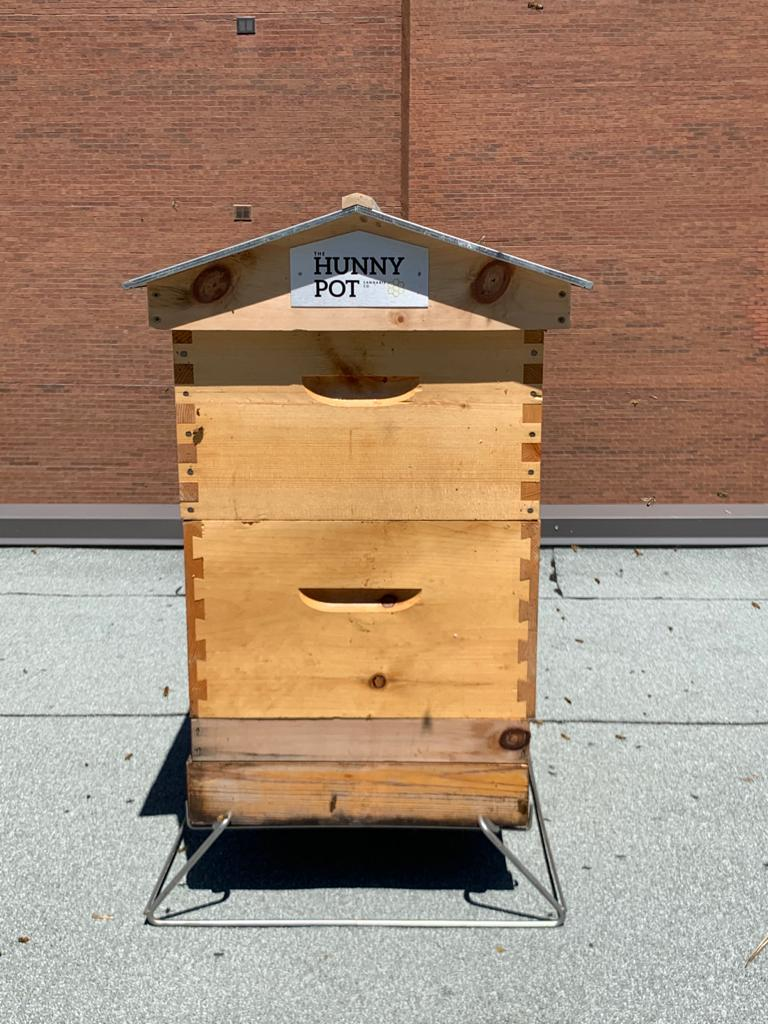 Alvéole Bee-Keeping & The Hunny Pot Toronto