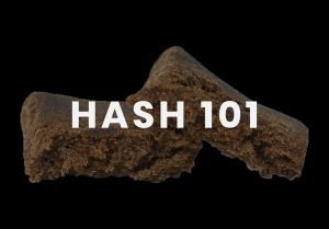 Hash 101 - All About Hash