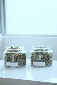 What does strain mean with weed