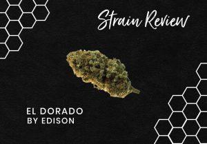 Strain Review: El Dorado