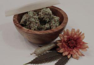 entourage effect of weed