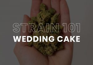 Wedding Cake Cannabis