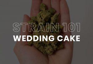 Wedding Cake Cannabis