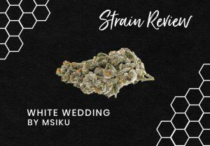 White Wedding Cannabis