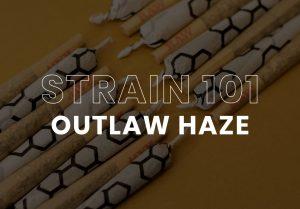 Outlaw Haze Cannabis, Hunny Pot
