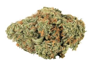 tally man cannabis